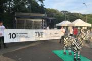 Campanha com zebra na rua que alerta para câncer raro movimenta São Paulo (SP)
