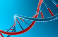 Tratamentos para doenças raras são incorporados pelo SUS
