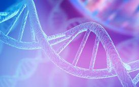 Síndrome de Angelman pode ter novo tratamento na Europa a partir de acordo entre farmas