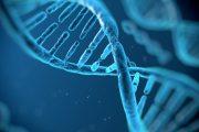 Consulta Pública avalia incorporação de tratamentos para doença de Fabry no SUS